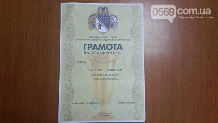 Юные волейболисты из Новомосковска стали чемпионами области, фото-1