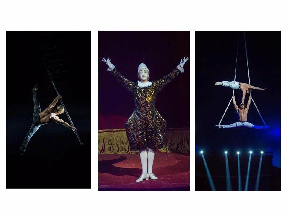 Цирк «Кобзов» с новой программой в Новомосковске!, фото-4