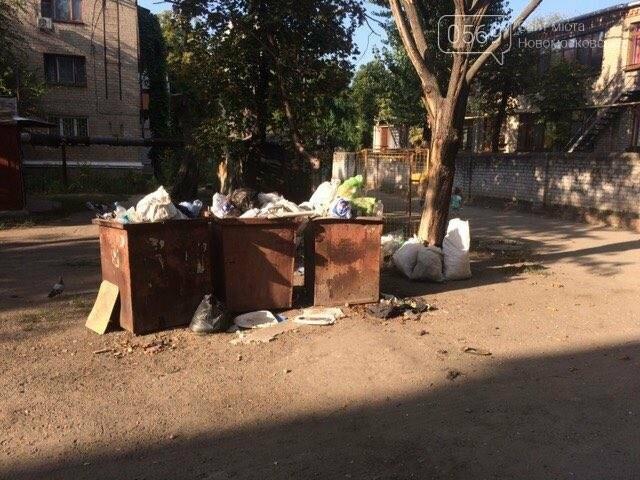 Новомосковск: праздники прошли, а мусор остался, фото-2
