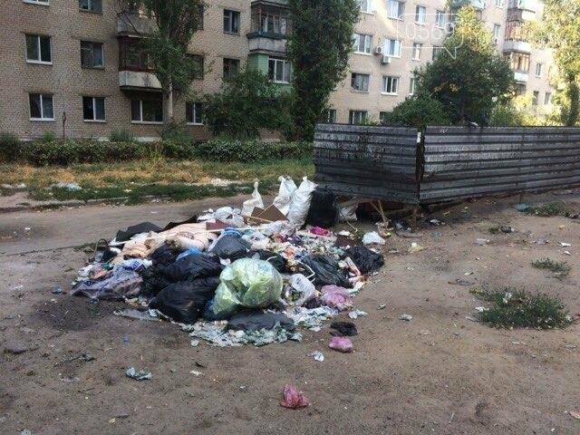 Новомосковск: праздники прошли, а мусор остался, фото-4