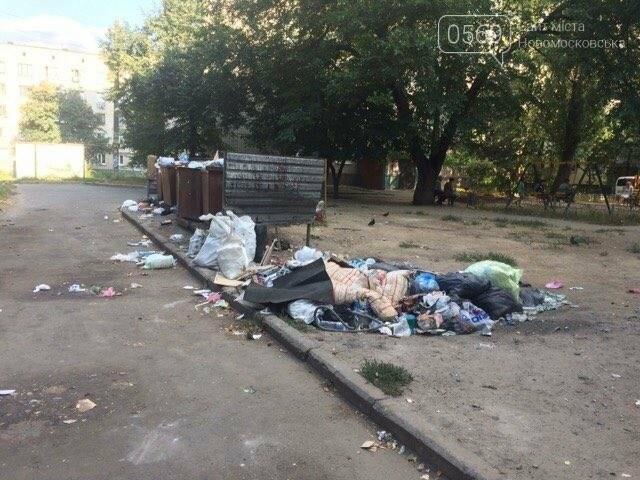 Новомосковск: праздники прошли, а мусор остался, фото-6