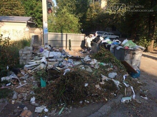 Новомосковск: праздники прошли, а мусор остался, фото-5