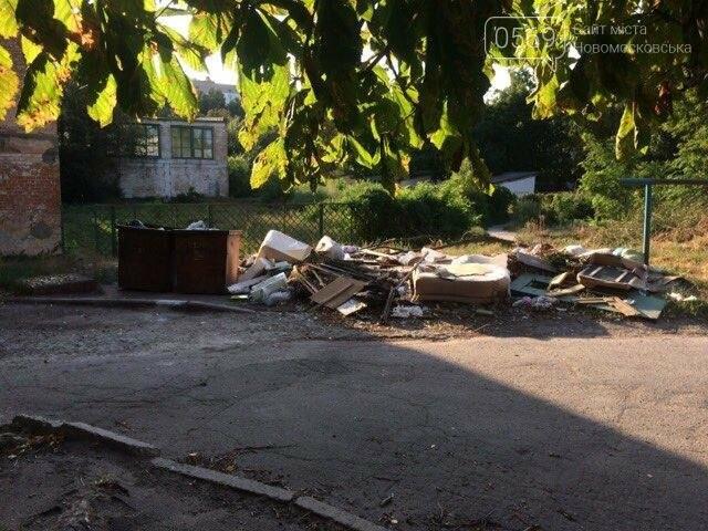 Новомосковск: праздники прошли, а мусор остался, фото-7