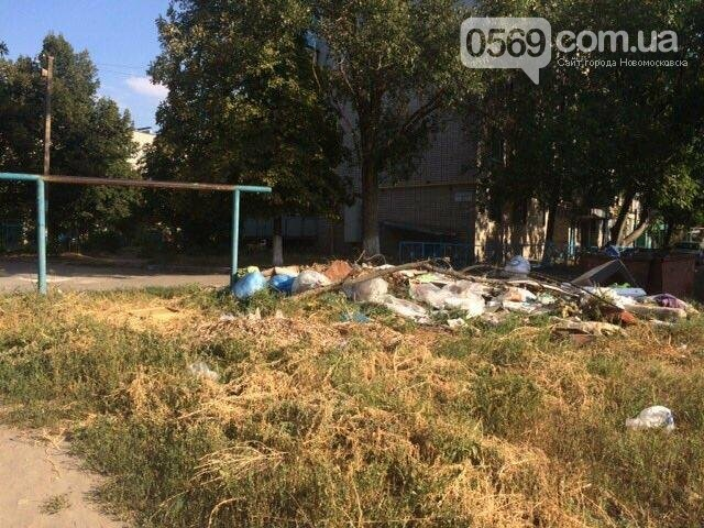 Новомосковск: праздники прошли, а мусор остался, фото-8