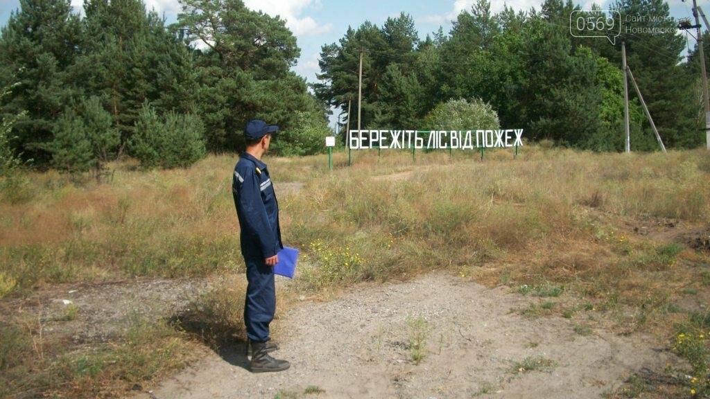 Спасатели Новомосковщины продолжают профилактическую работу с населением, фото-6