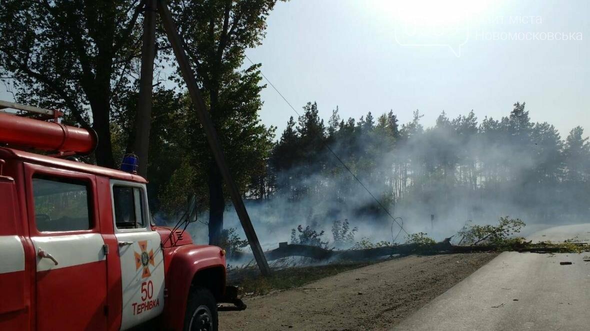 Крупный лесной пожар в Новомосковском районе, фото-2