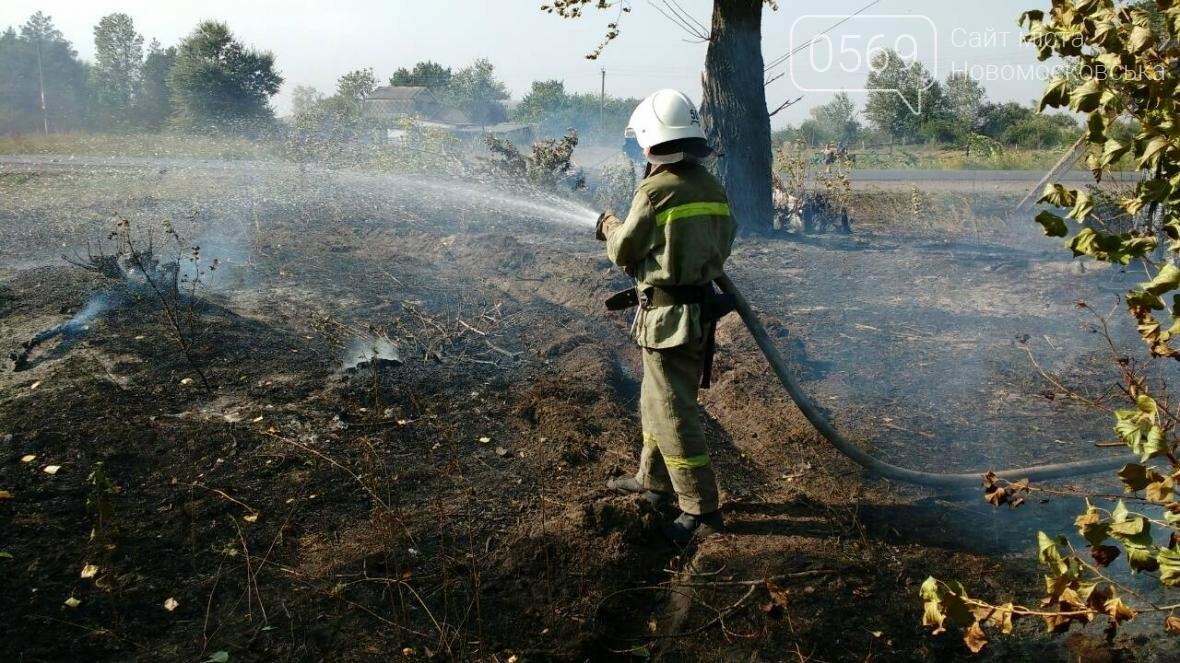 Крупный лесной пожар в Новомосковском районе, фото-3