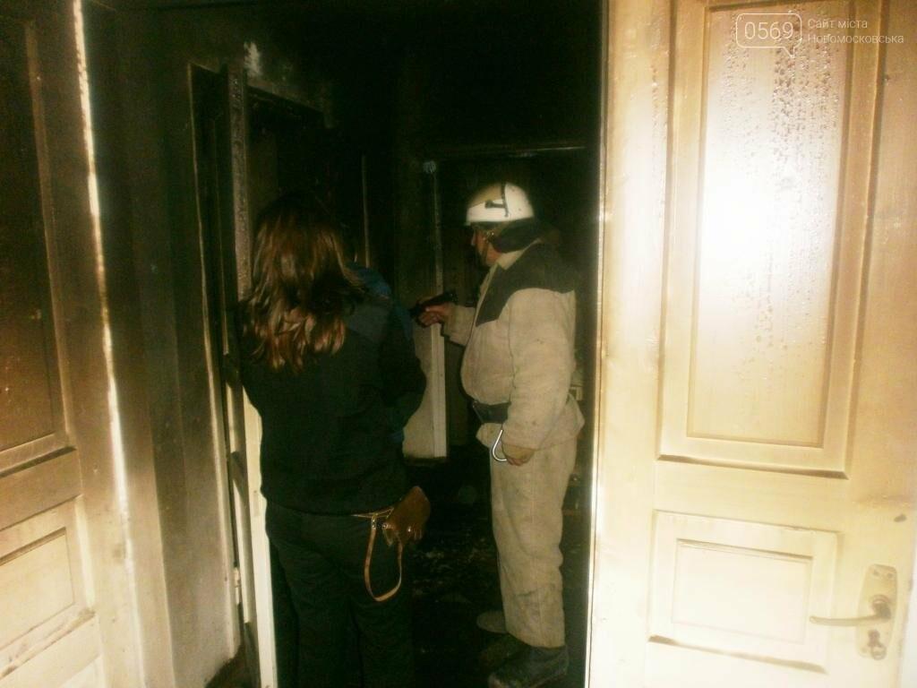Хозяин дома в Новомосковском районе погиб на пожаре , фото-1