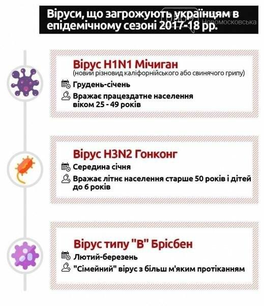 Какие вирусы ожидают новомосковцев этой зимой , фото-1