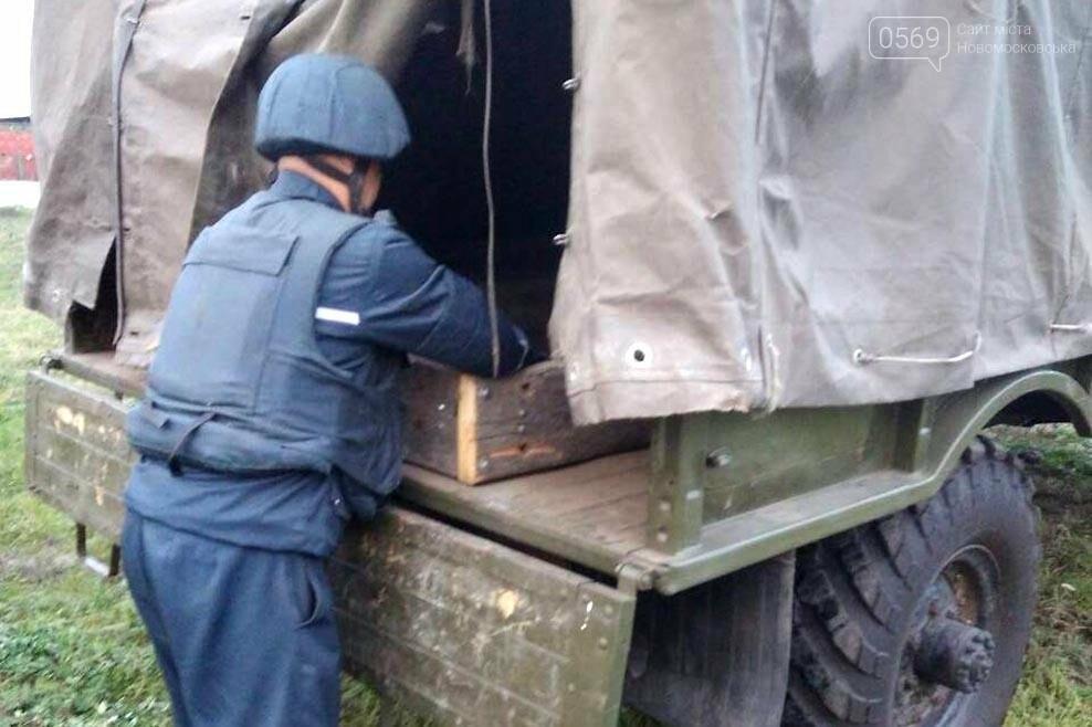 В Новомосковске обезвредили сотню снарядов, фото-2
