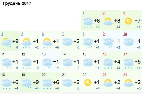 Каким будет первый месяц зимы в Новомосковске, фото-1