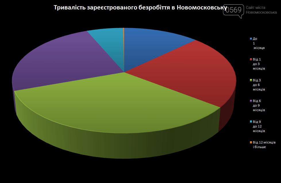 Сотні мешканців Новомосковська не можуть знайти роботу , фото-1