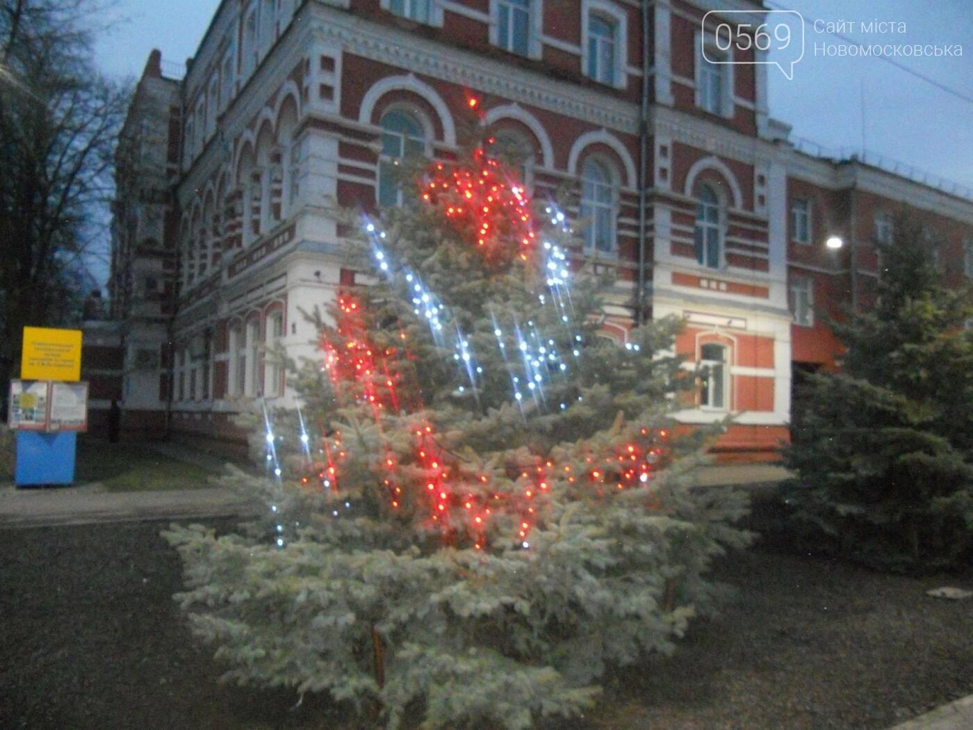 В Новомосковську урочисто відкрили міську ялинку, фото-2