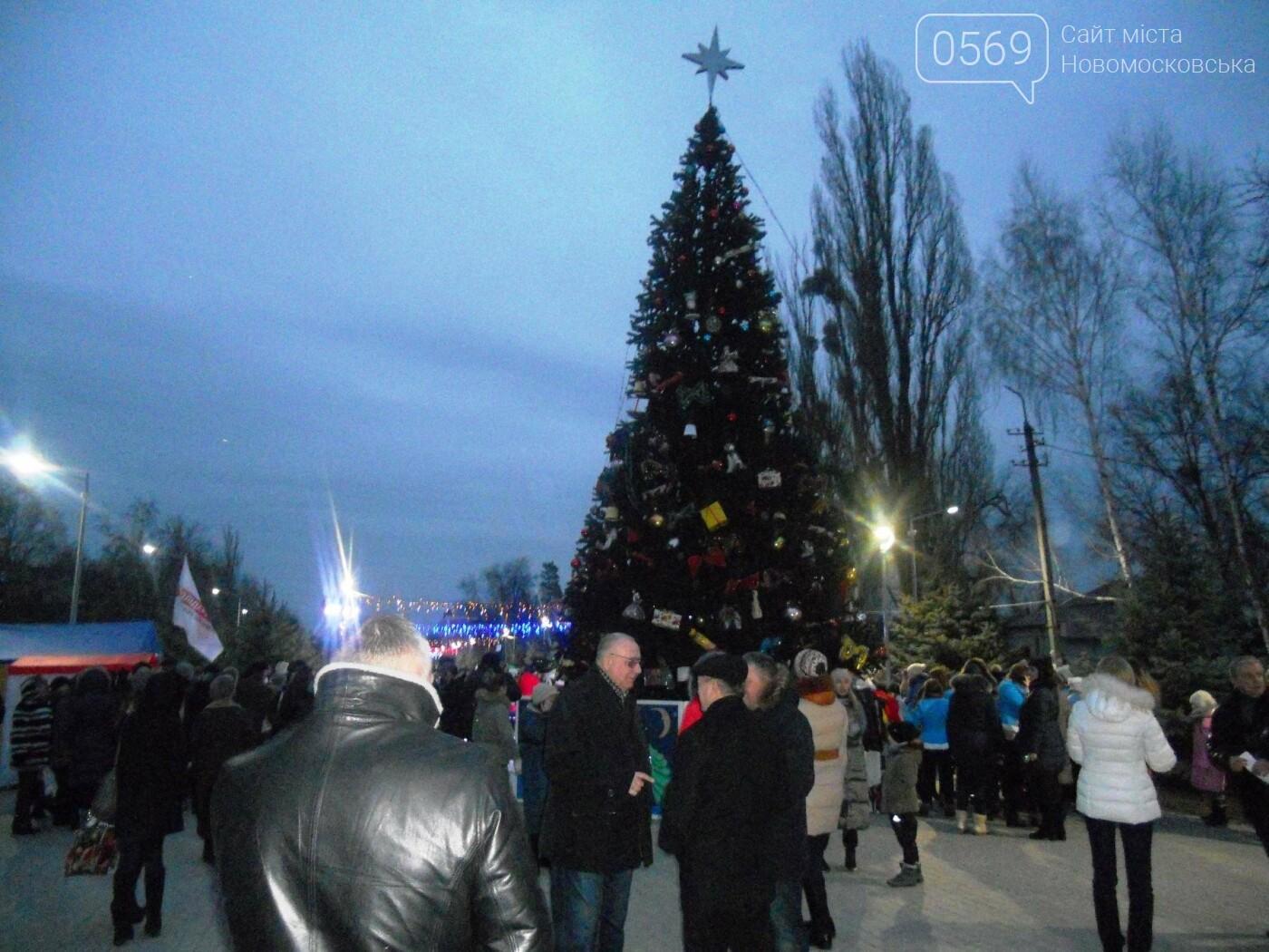 В Новомосковську урочисто відкрили міську ялинку, фото-1