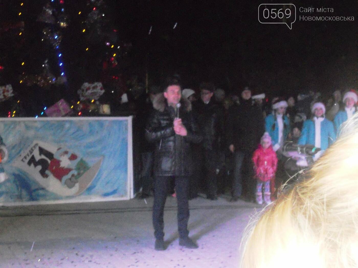 В Новомосковську урочисто відкрили міську ялинку, фото-7