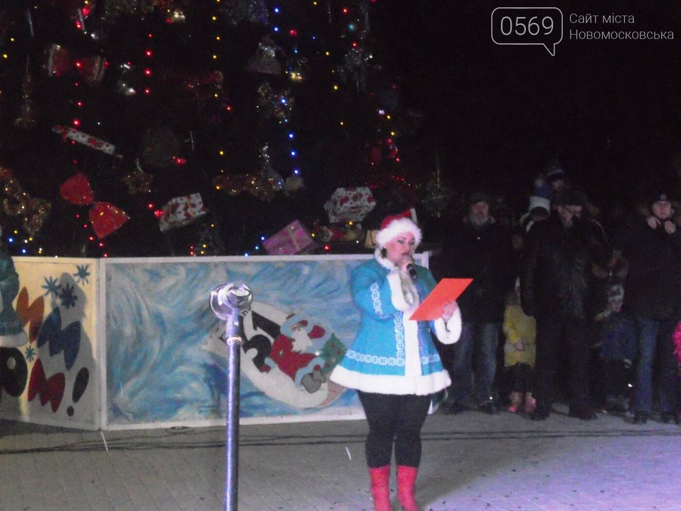 В Новомосковську урочисто відкрили міську ялинку, фото-10