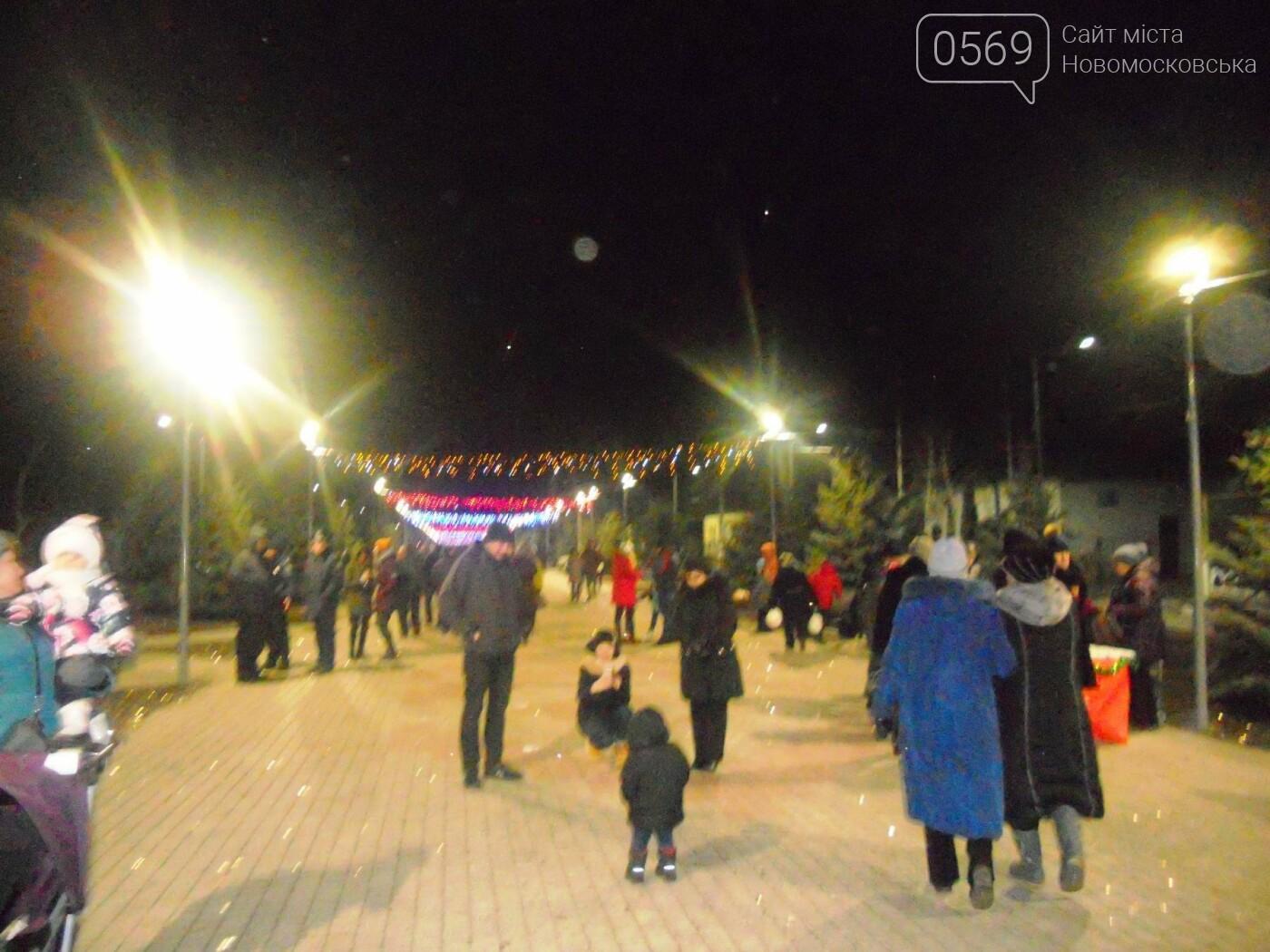В Новомосковську урочисто відкрили міську ялинку, фото-18