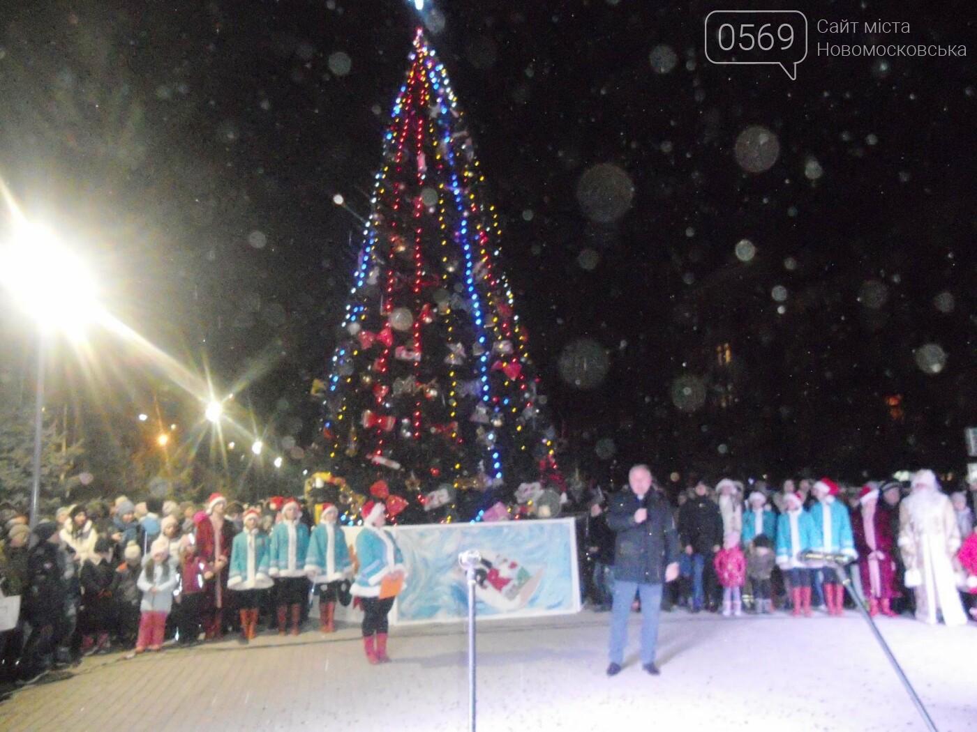 В Новомосковську урочисто відкрили міську ялинку, фото-6