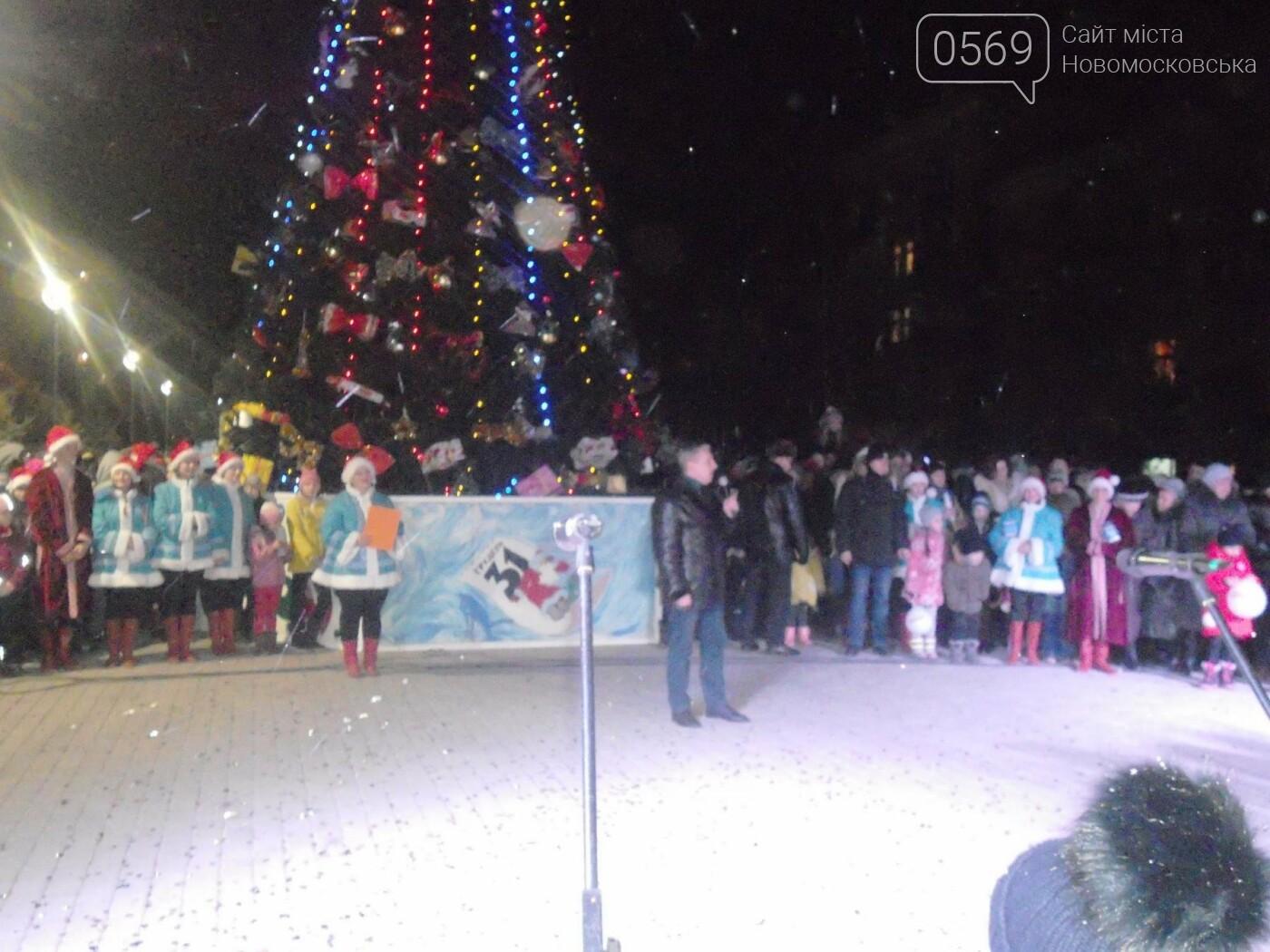 В Новомосковську урочисто відкрили міську ялинку, фото-5