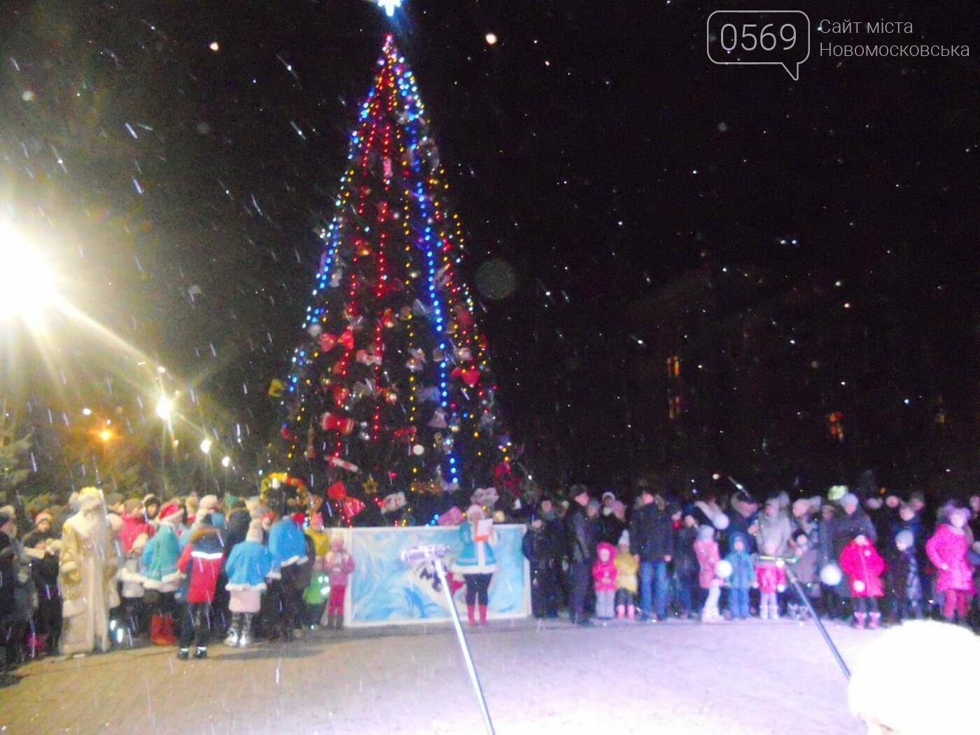 В Новомосковську урочисто відкрили міську ялинку, фото-8