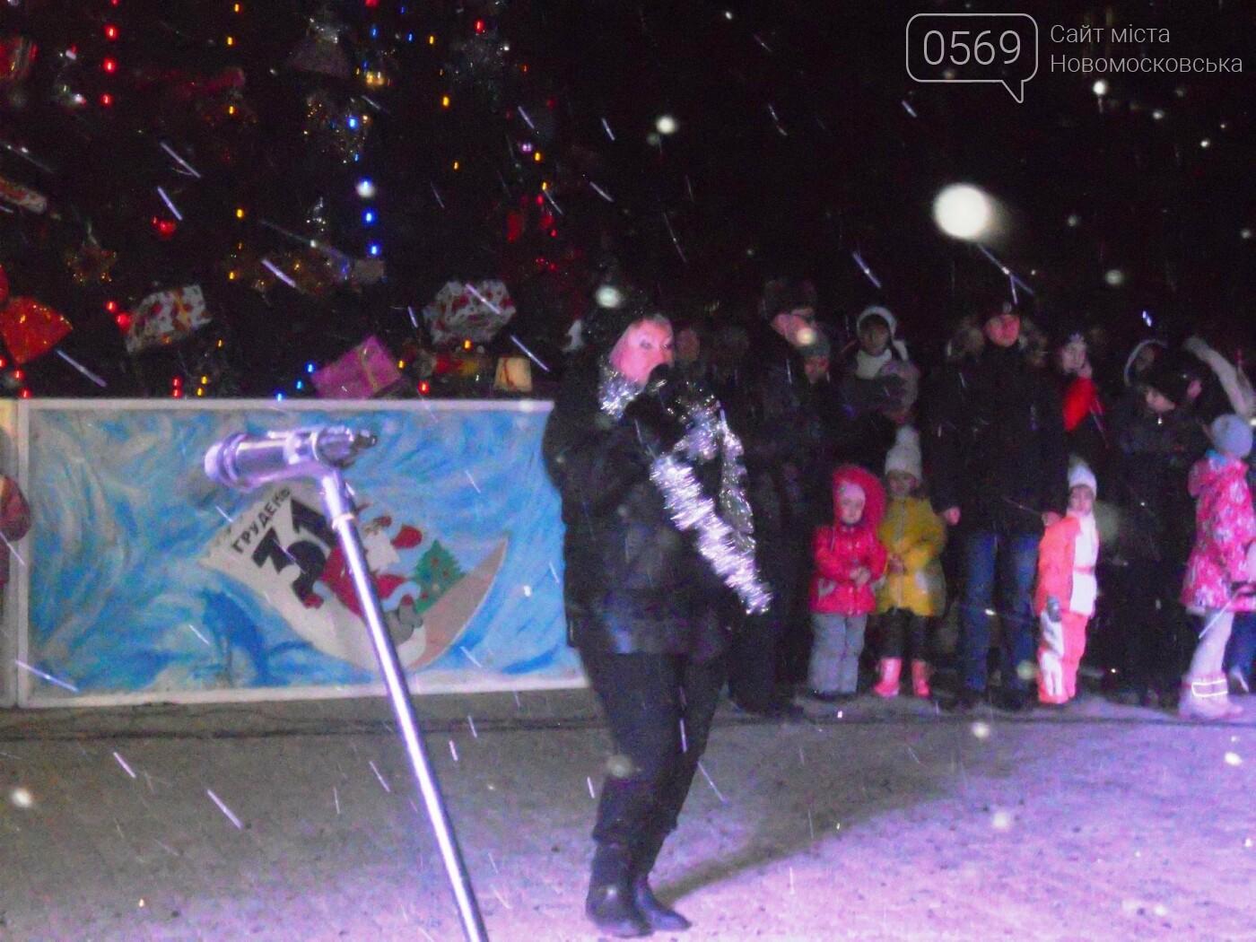В Новомосковську урочисто відкрили міську ялинку, фото-16