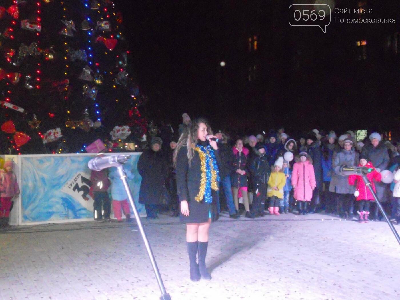 В Новомосковську урочисто відкрили міську ялинку, фото-14