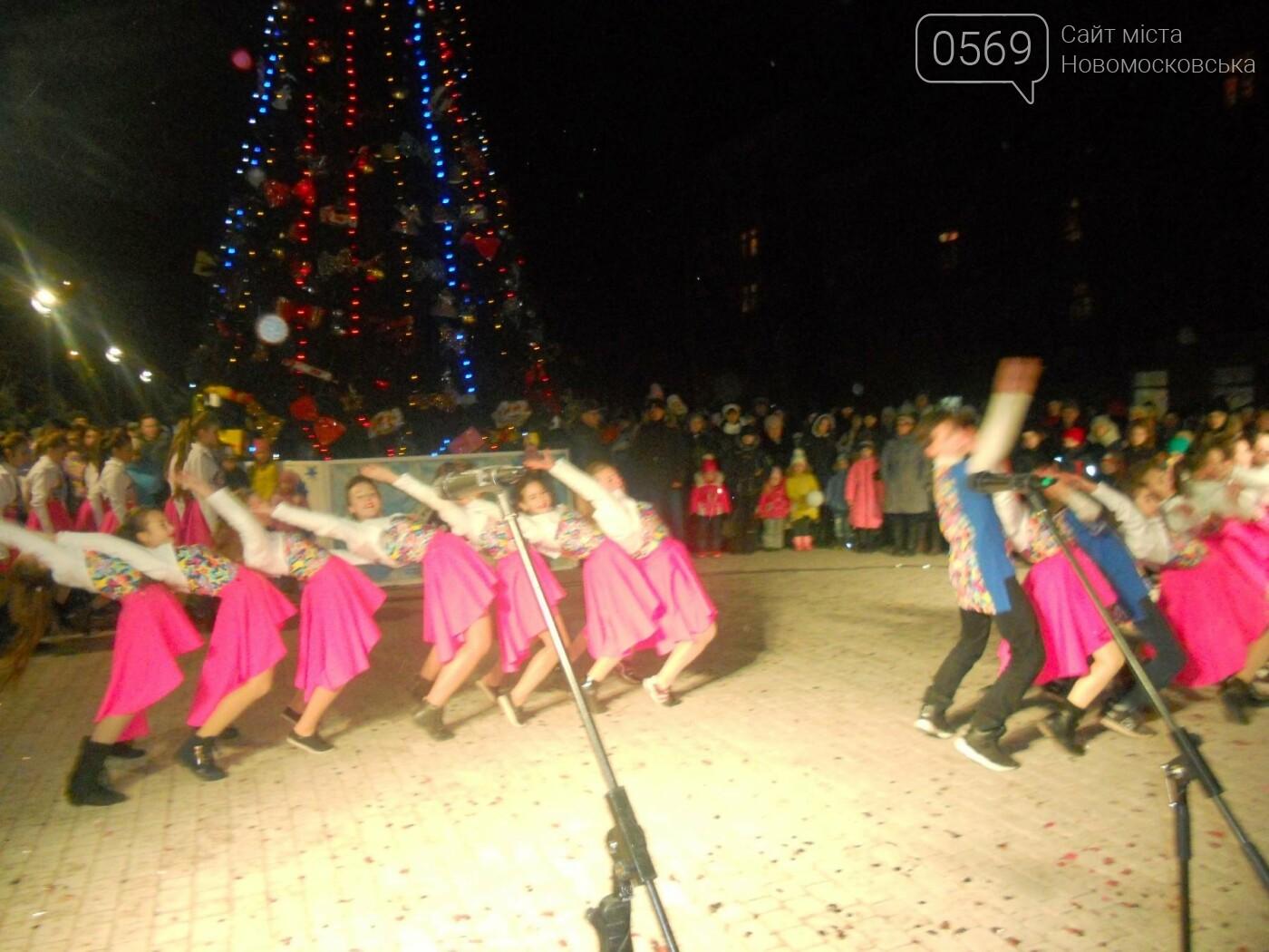 В Новомосковську урочисто відкрили міську ялинку, фото-12