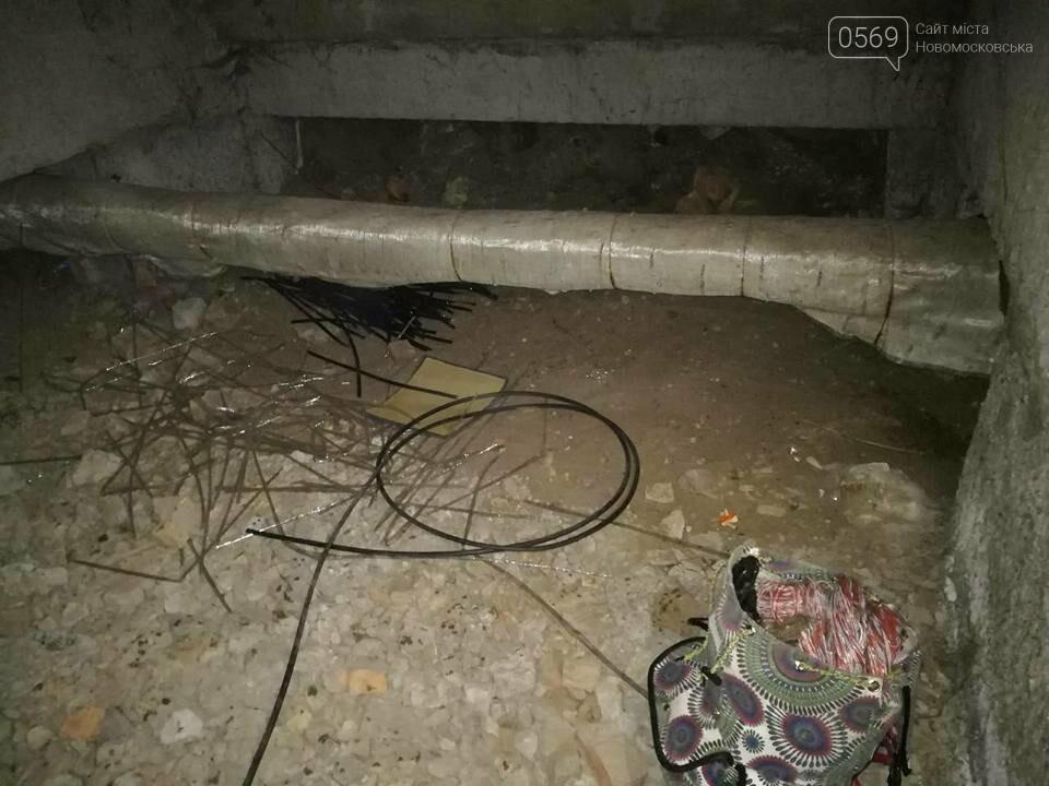 В Новомосковському районі затримали крадія кабелю, фото-1