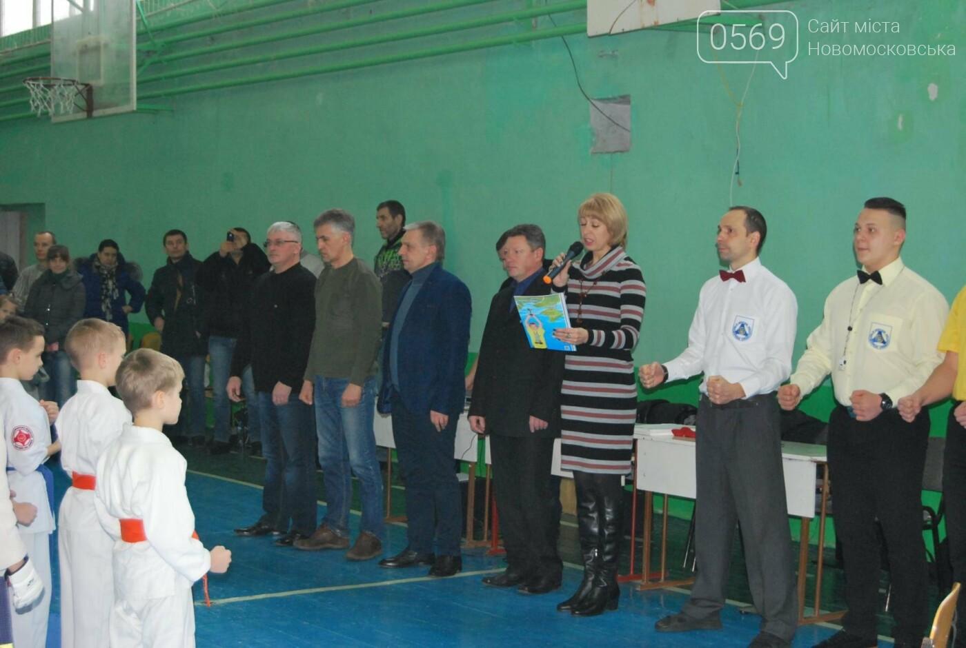 В Новомосковську змагалися каратисти, фото-1