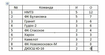 В Новомосковске состоялись очередные игры Кубка Федерации, фото-2