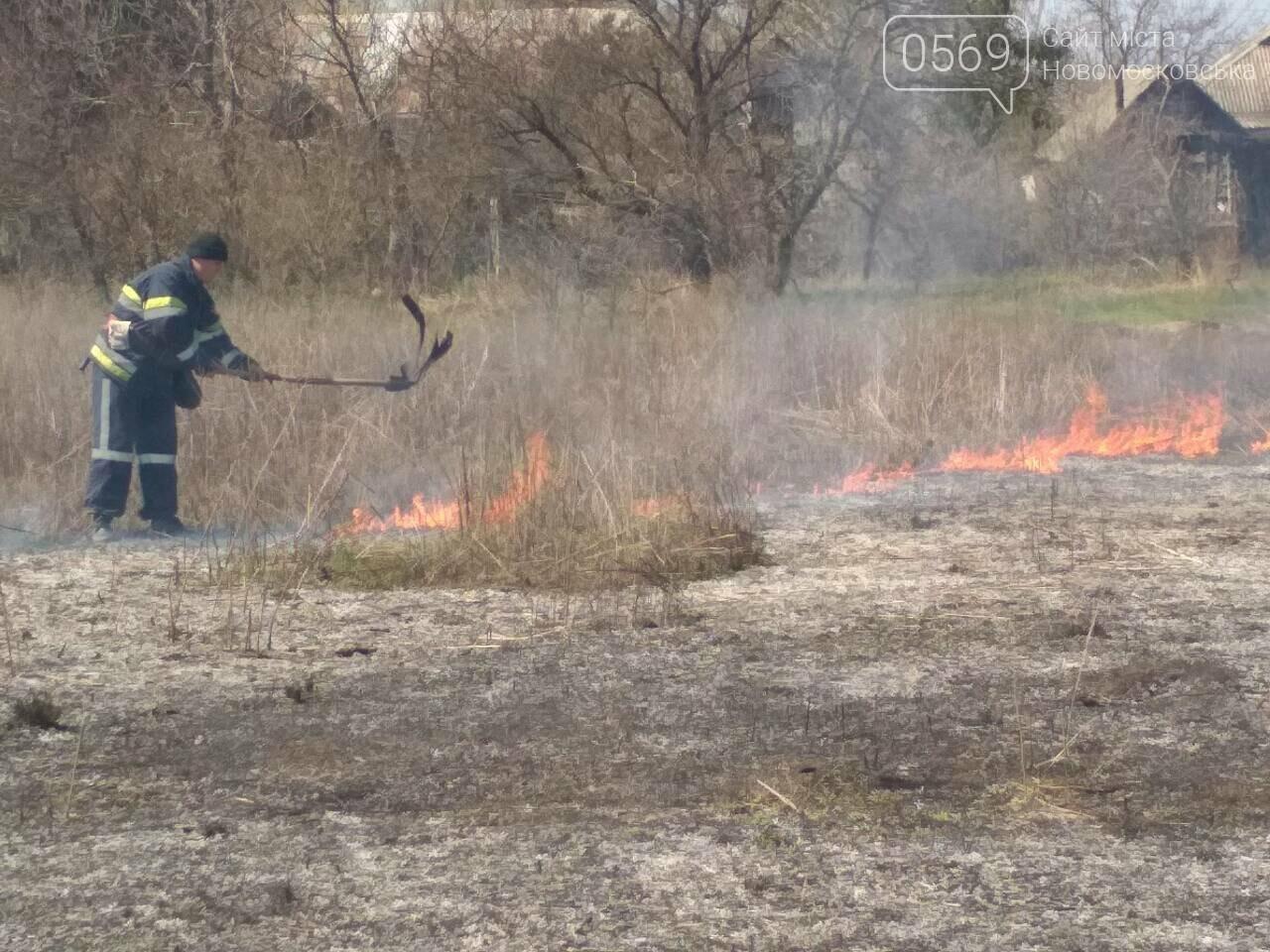 На Новомосковщині згорів гектар сухої трави, фото-3
