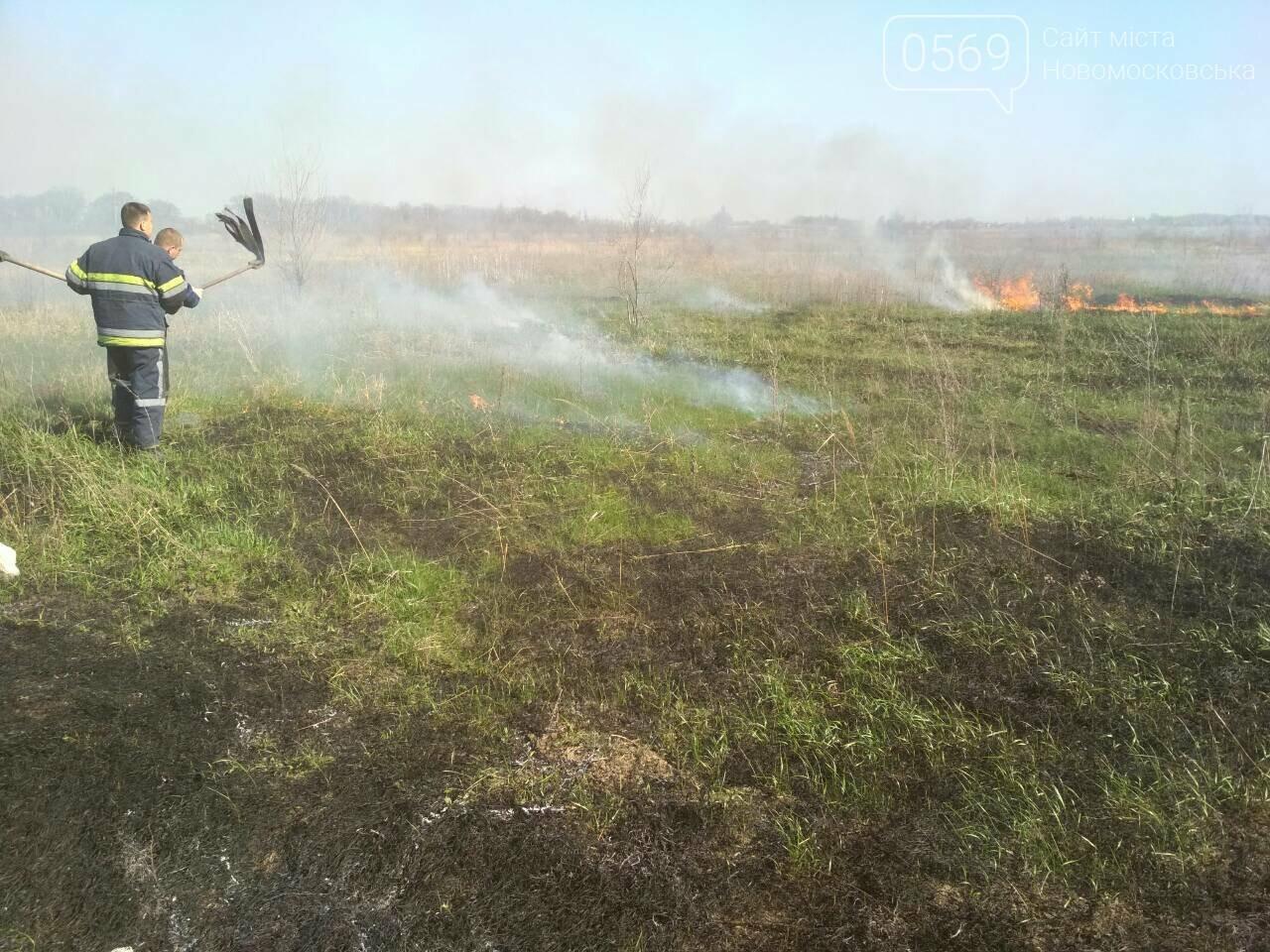На Новомосковщині згорів гектар сухої трави, фото-4