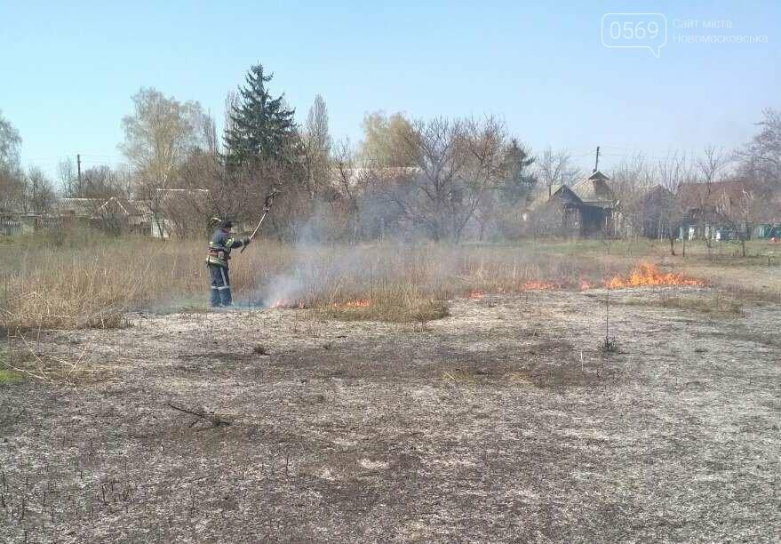 На Новомосковщині згорів гектар сухої трави, фото-2