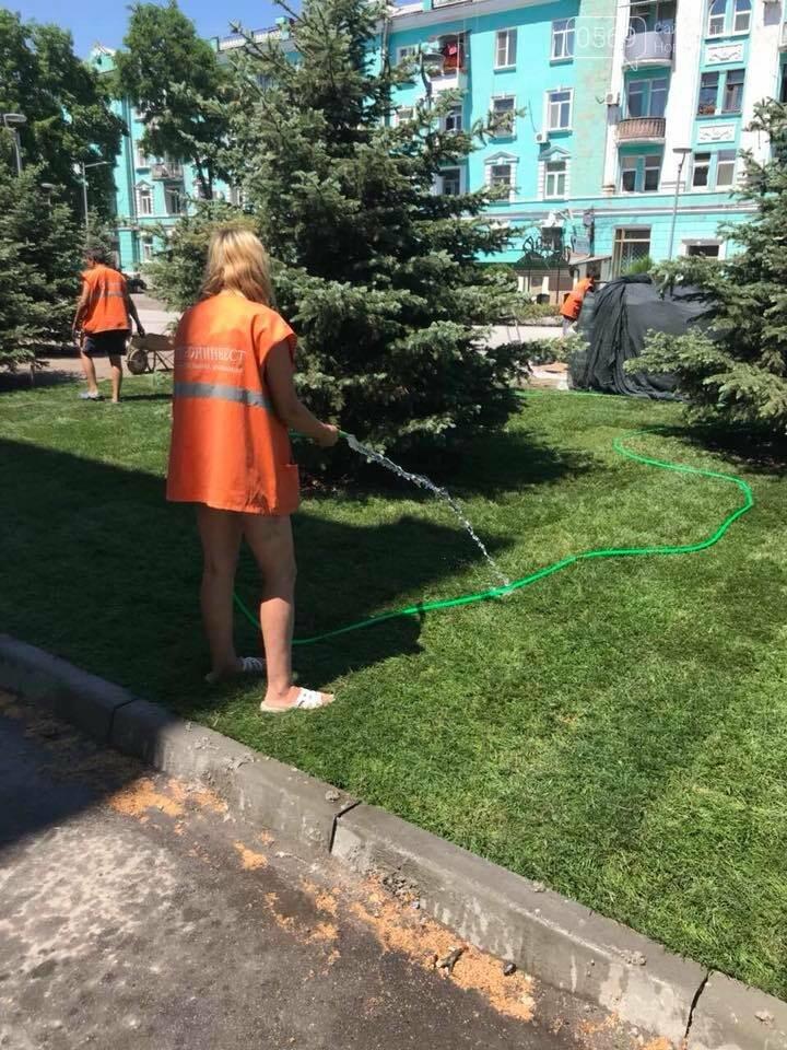 На площі Героїв у Новомосковську стане зеленіше, фото-2