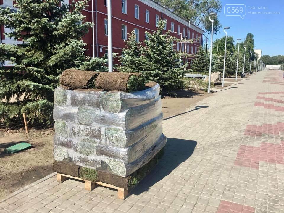 На площі Героїв у Новомосковську стане зеленіше, фото-3