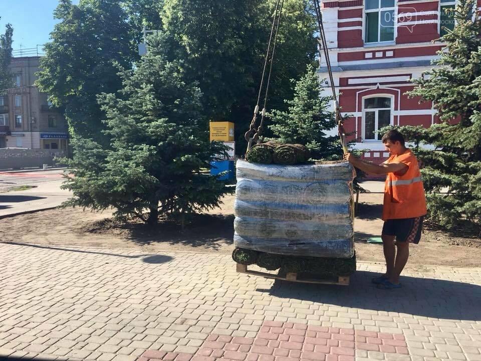 На площі Героїв у Новомосковську стане зеленіше, фото-8