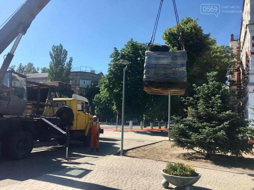 На площі Героїв у Новомосковську стане зеленіше, фото-6