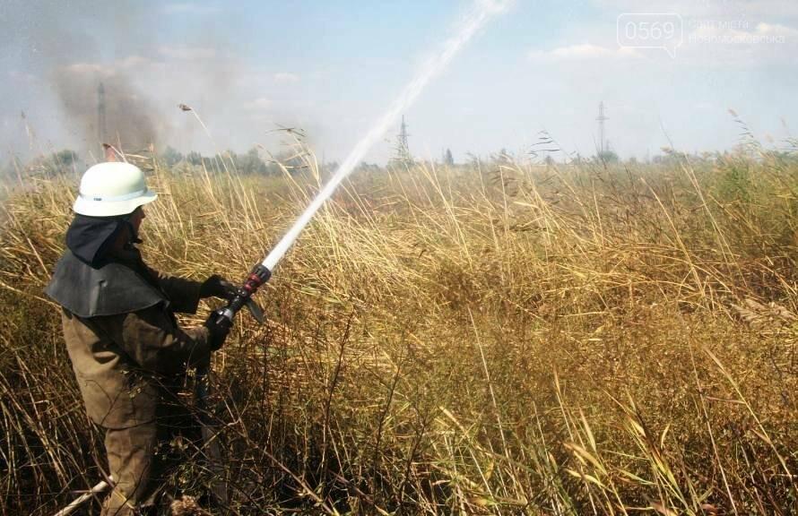 У Новомосковську 5 годин гасили пожежу сухої трави, фото-1