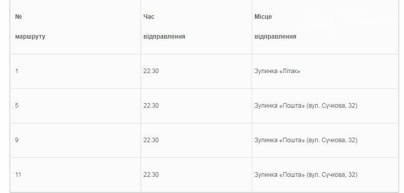 В День міста в Новомосковську організують додаткові рейси громадського транспорту, фото-1