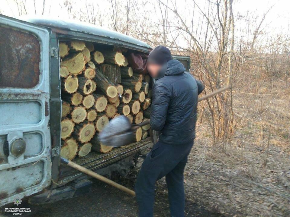 На Новомосковщині незаконно вирубували лісосмугу, фото-1
