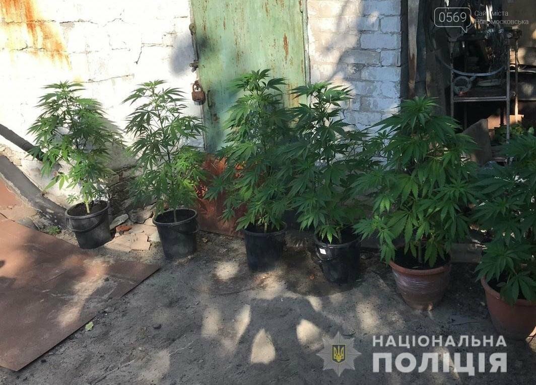 У Новомосковську поліція викрила групу наркоділків, фото-3