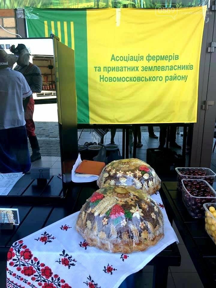 В Піщанській ОТГ пройшла ярмарка-презентація, фото-2