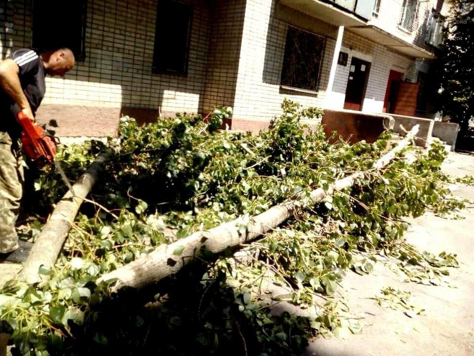 Новомосковськ очистили від повалених штормовим вітром дерев та гілок, фото-4