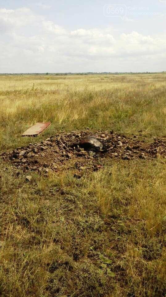 В тушах свиней, звалених в могильник на території Піщанської ОТГ, виявили вірус африканської чуми, фото-4
