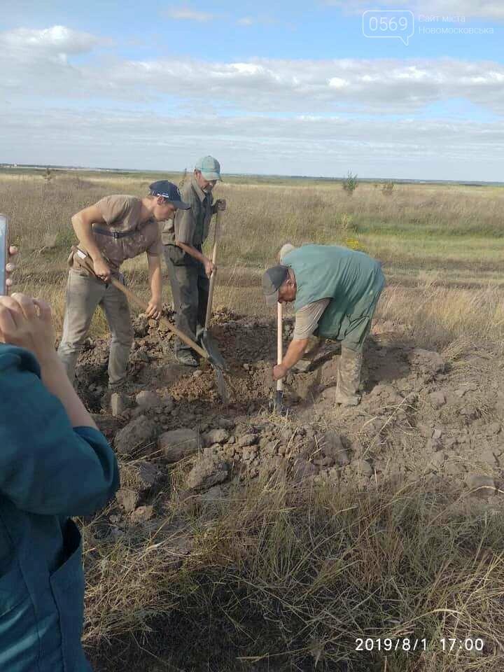 В тушах свиней, звалених в могильник на території Піщанської ОТГ, виявили вірус африканської чуми, фото-3