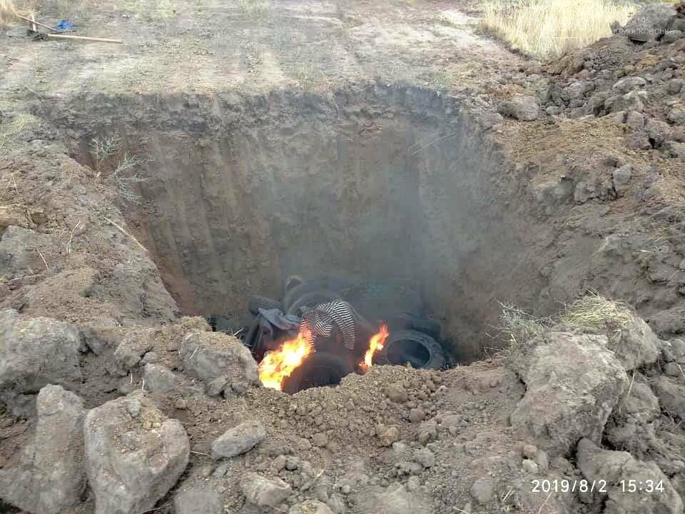 В тушах свиней, звалених в могильник на території Піщанської ОТГ, виявили вірус африканської чуми, фото-2