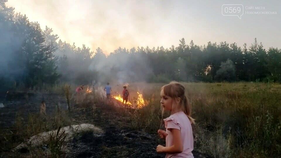 У Піщанській ОТГ діти потушили підпалений кимось ліс, фото-1