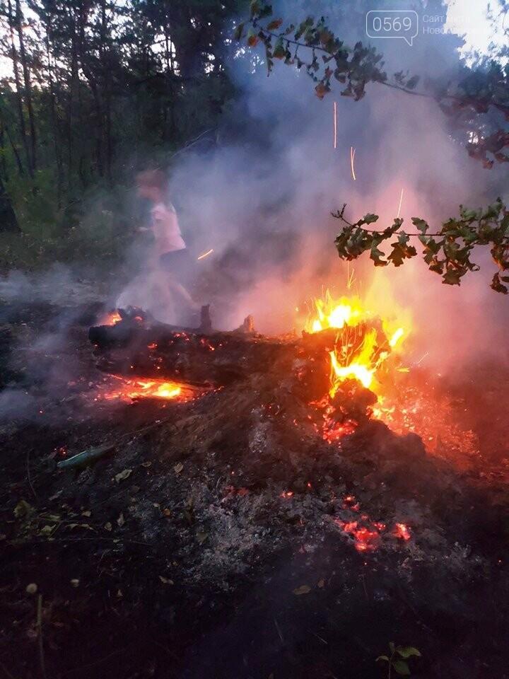 У Піщанській ОТГ діти потушили підпалений кимось ліс, фото-2