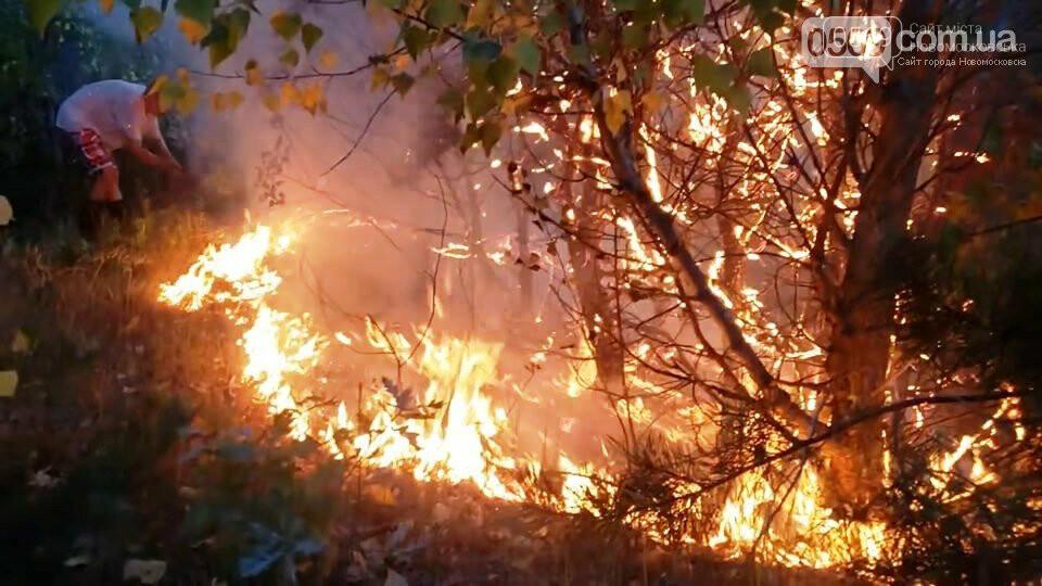 Дітям, які тушили пожежу в Піщанському лісі, вручили грамоти за мужність та подарунки, фото-6