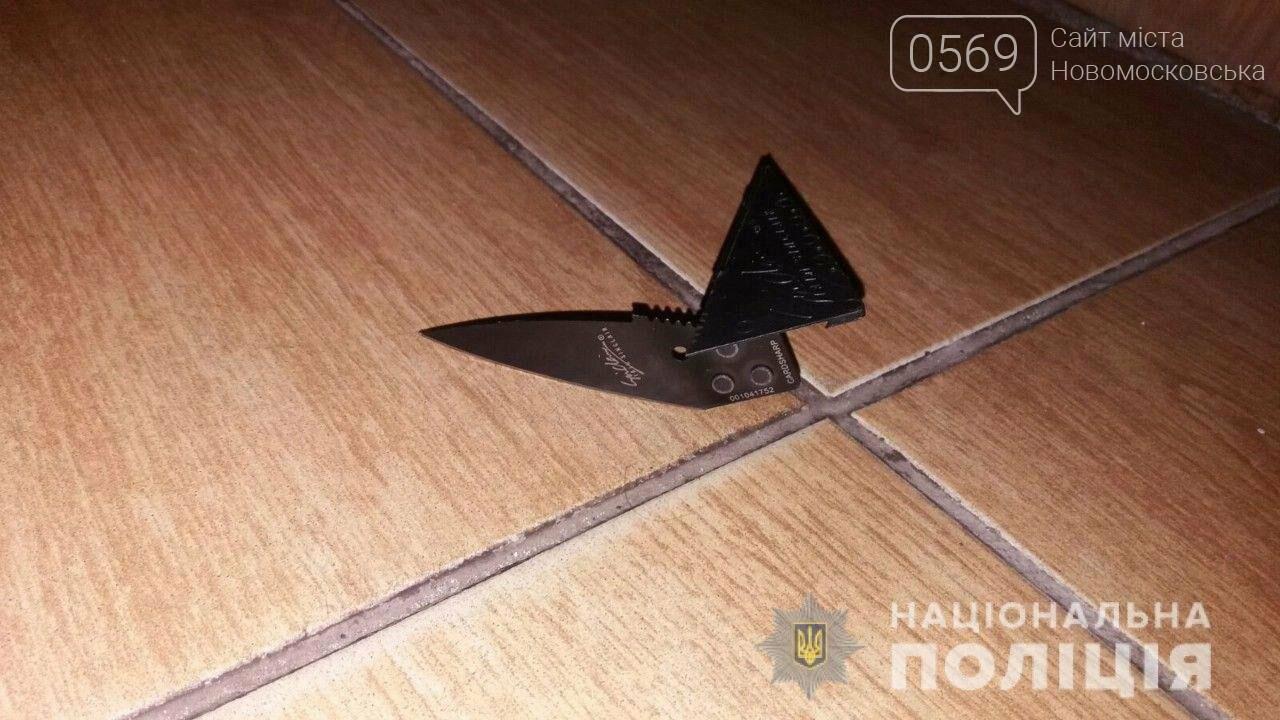 У Новомосковську відвідувача одного з кафе довелося вгамовувати поліцейським охорони, фото-1